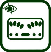 Braille keyboard icon